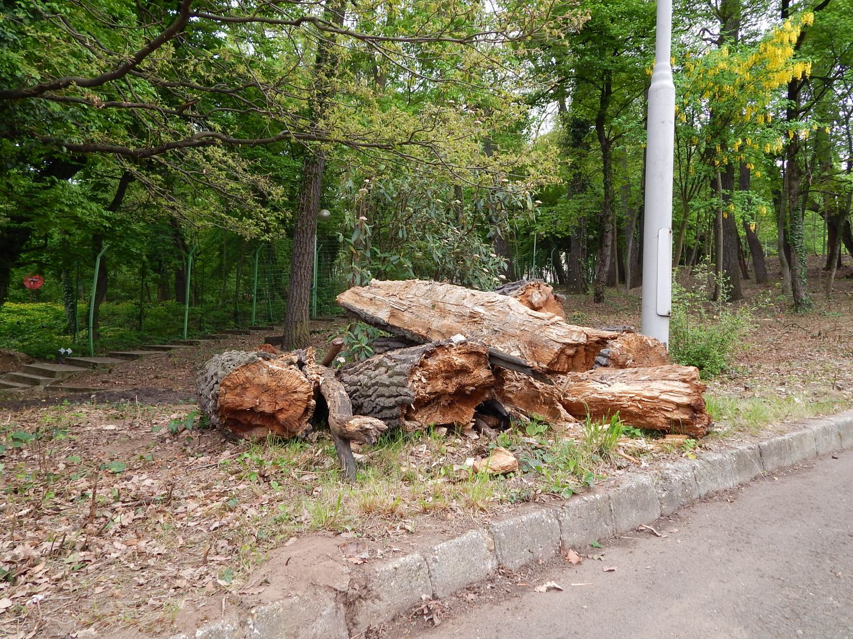 A Köztársasági Elnöki Rezidencia park megújítás